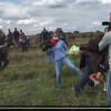 Vidéo. La journaliste qui avait frappé des migrants inculpée par la justice.
