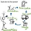La théorie du cycle de vie.